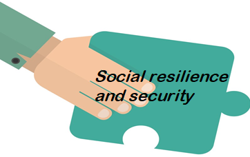 Social resilience and security